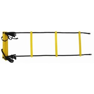 Training Ladder with Bag
