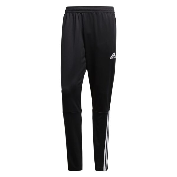 regista-18-training-pant