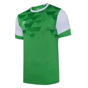 Vier ss jersey - tw emerald / white